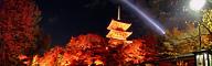 三重塔と紅葉のパノラマ夜景写真